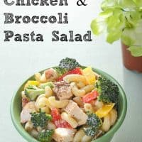 Grilled Chicken & Broccoli Pasta Salad