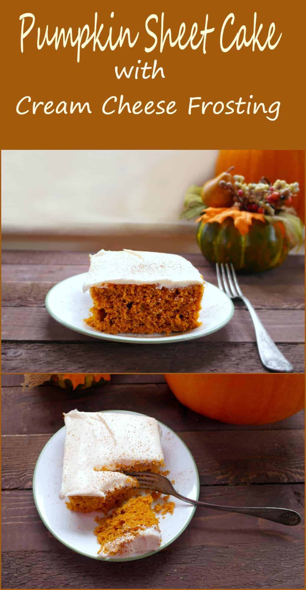 This pumpkin cake recipe with cream cheese frosting is going to fast become a favorite for you entire family during the pumpkin rich fall months. - Teaspoon Of Goodness
